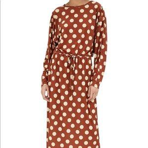 Zara Brown Polka Dot Midi Dress